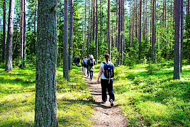 Personer som vandrar längs Upplandsledens etapp 16 vid Gropholmarna.