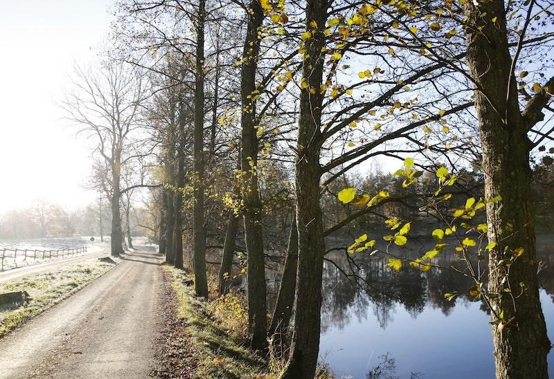 07 Långasjönäs - Persgärde   Blekingeleden