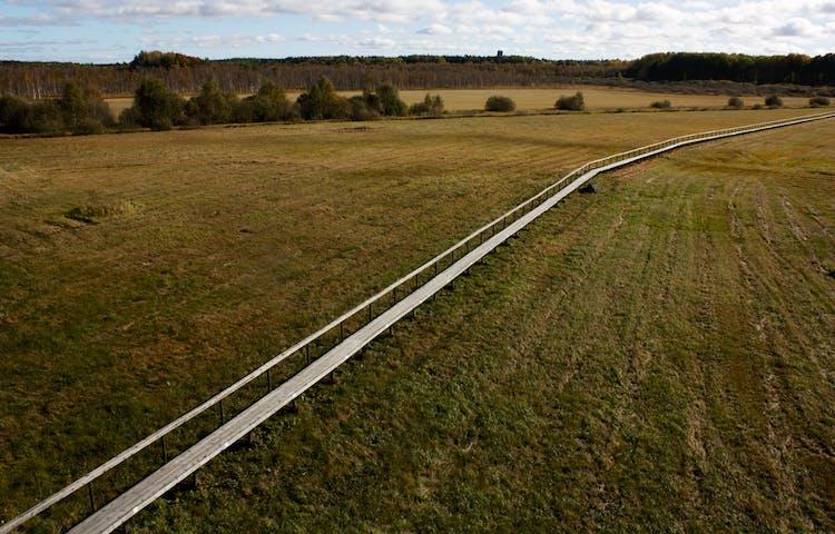 En lång och bred spång går över en utredd våtmark.