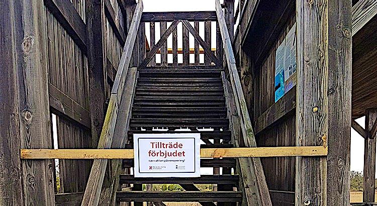 Avstängs trappa på utsiktsplattform i trä.