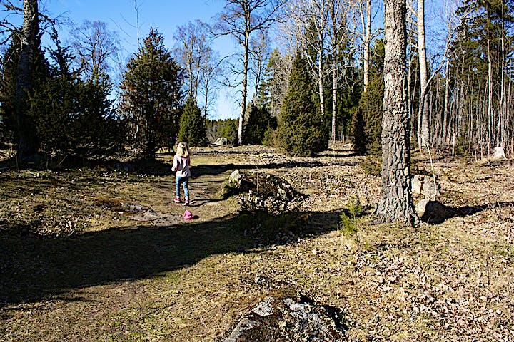 Ett barn går på en hagmarksstig mellan stenar.