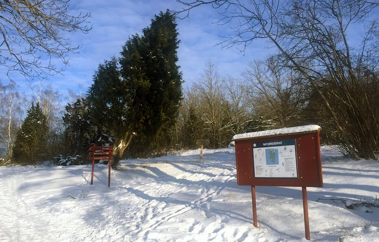 Informationsskylt nedanför en snöig backe.
