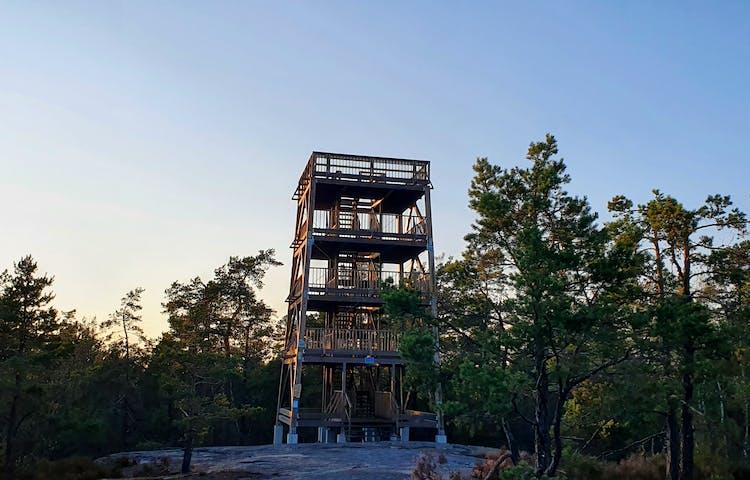 Ett torn byggt av träd med tre våningar. Tornet sticker upp precis ovanför träden.