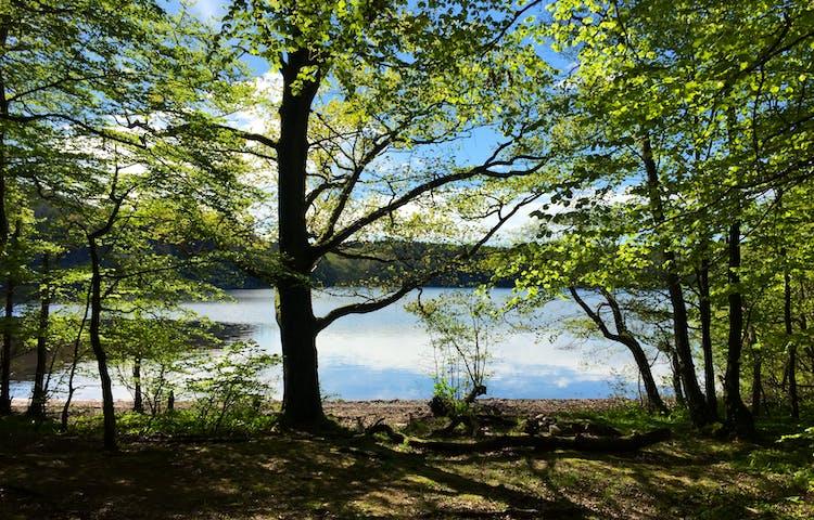 Sjön Lygnern
