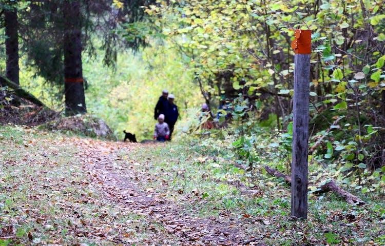 En stolpe med orange pilar som visar vägen. På stigen syns några personer gå med en hund.