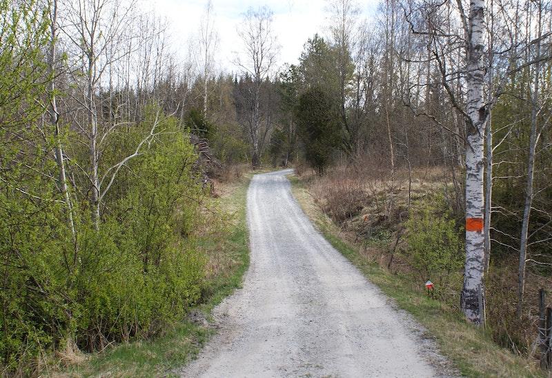 Grusväg vid samhället Bastmora