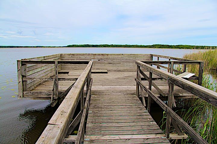 Utkiksplattform som ligger som en brygga i vattnet. Det är staket på sidorna.