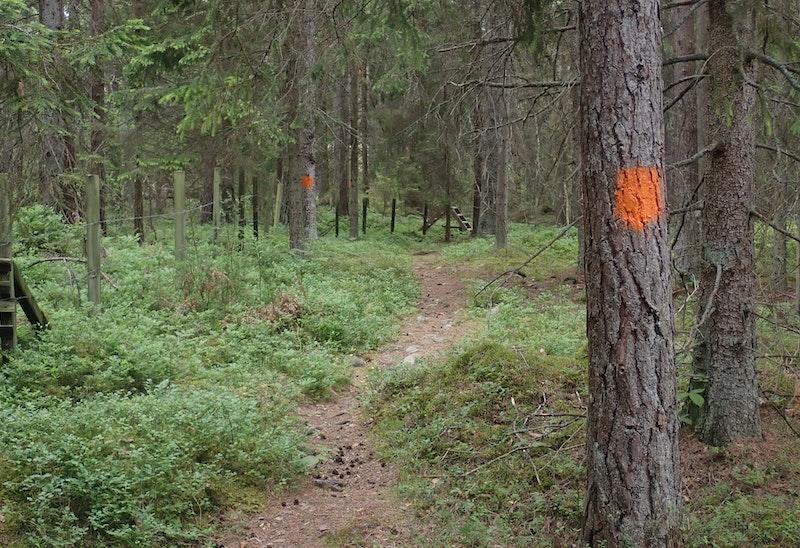 Vindåsen/Hulöhamn