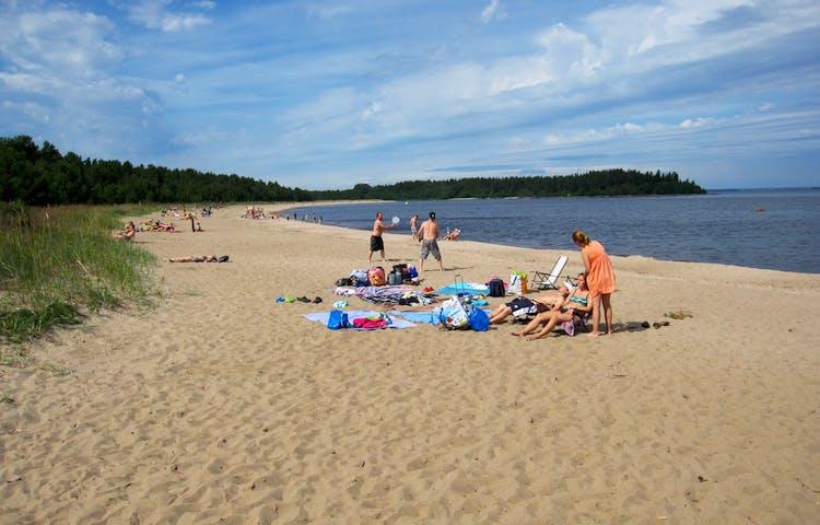 Många människor är på en sandig badplats vid havet. Stranden kantas av vass.