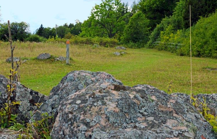 Stenar i hage. En gammal stubbe har fått orange färg för att visa vägen.