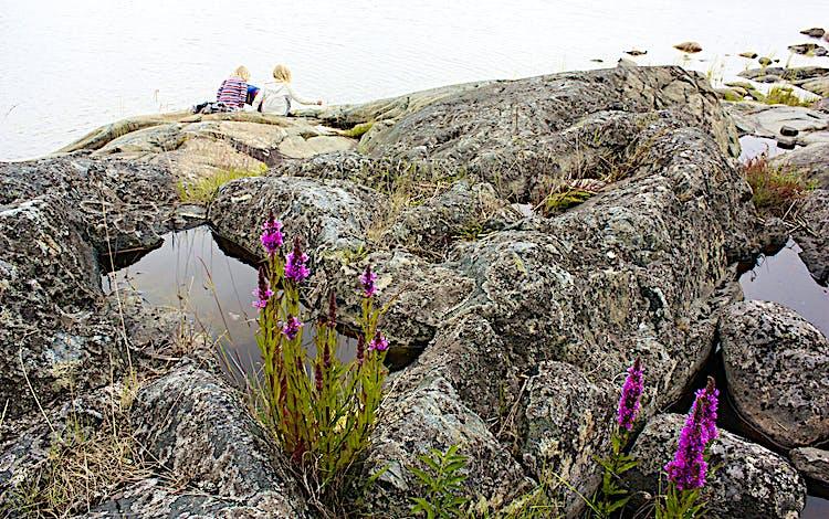 På en ojämn klipphäll har små vattenfyllda gölar bildats. Det växer blommor vid en av gölarna och i bakgrunden sitter tre barn.