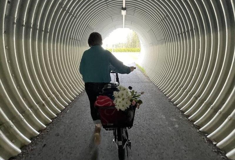 Säkra undergångar under riksvägen  - foto: Linnéa Björk