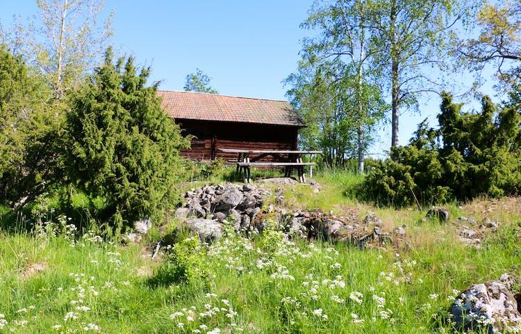 En betesmark med gräs, blommor, stenar, buskar och träd, ett rött hus och picknickbord.
