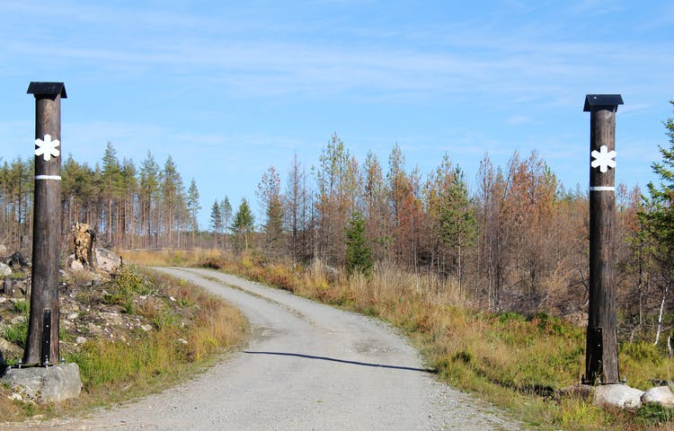 Ingången till naturreservatet. På var sida av grusvägen står två brända trädstammar med vita markeringar som visat att här är ett naturreservat.