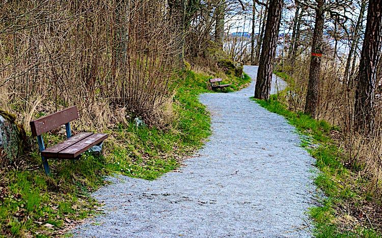 Grusväg med bänkar vid sidan. Orange ledmarkering på träd.