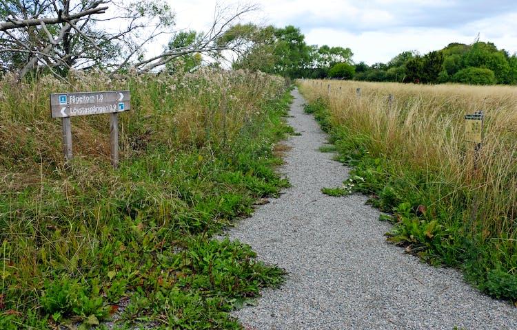 Grusvägen leder in mellan gräsbevuxna ängar. Träskyltar visar väg och avstånd.