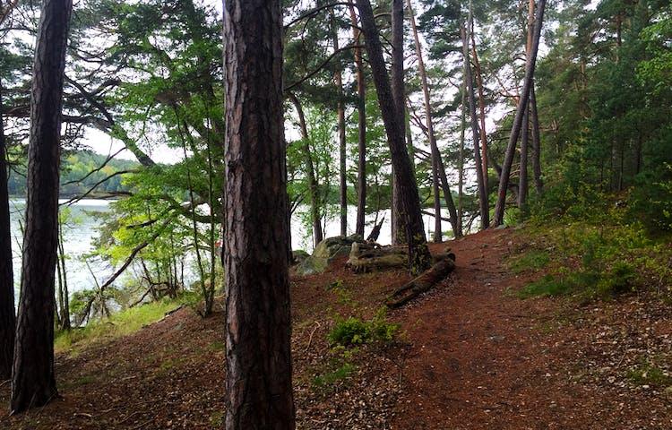 Stigen slingrar sig fram runt Kärsön.