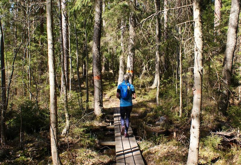 Löpare på väg mot St Trehörningen