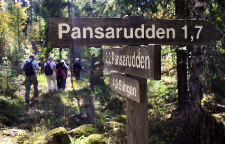 Fem vuxna vandrar genom skogen. I förgrunden står en vägvisade med texten Pansarudden på.