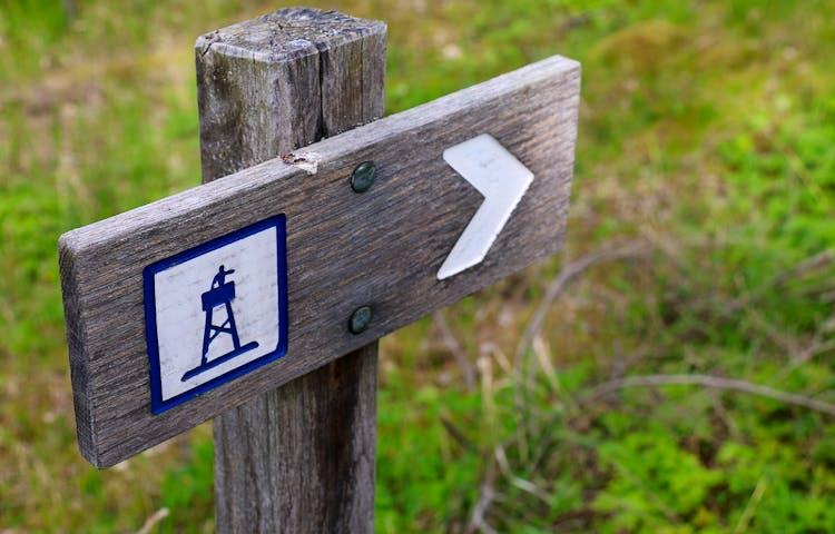 Träskylt som visar vägen till fågeltornet.