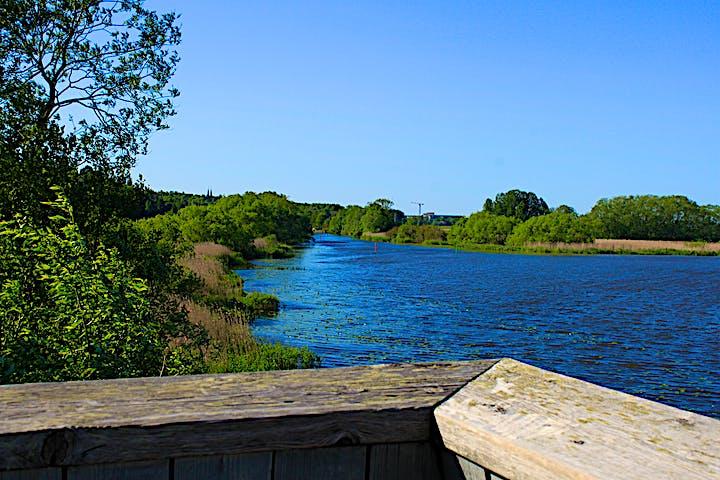Högst upp i fågeltornet finns ett högt skyddsräcke och ett bra utsikt över Fyrisån. Det är många träd på bägge sidor av ån.