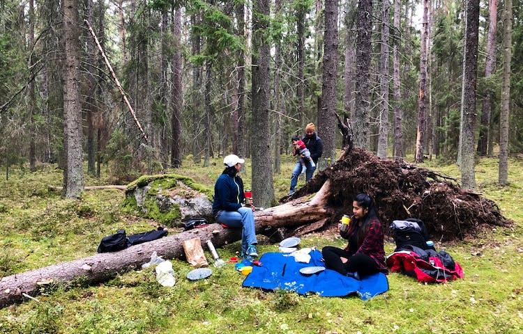Picknick i Adelsö Sättra naturreservat. Foto: Miguel Jaramillo