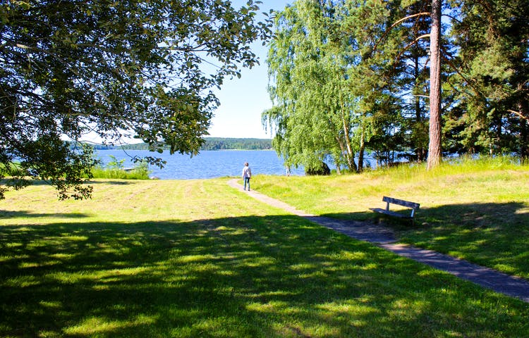 En person går på en smal grusstig ner till vattnet. Stigen går på en öppen gräsyta med träd i kanterna.
