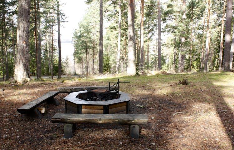 I skogen finns en rastplats med tre låga sittbänkar som står runt en låg grillplats med vridbart grillgaller. Marken är något ojämn med flera rötter.