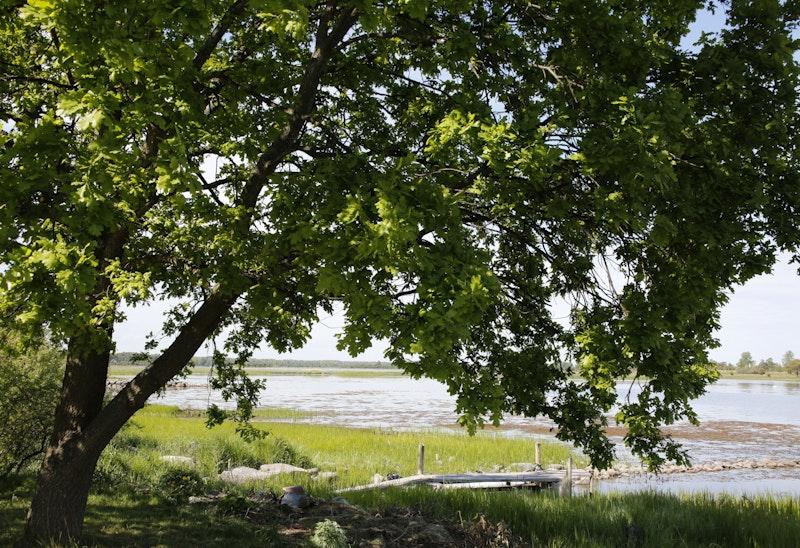 14 Älmtasjön - Kristianopel   Blekingeleden