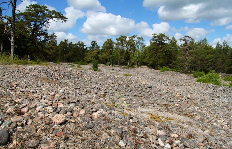 En matta av sten, ett såkallat klapperstensfält.