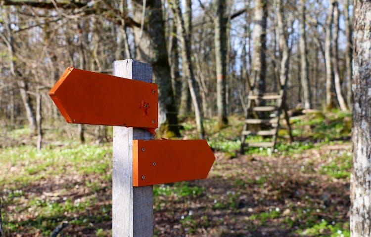 Två orange pilar på stolpe som visar vägen.