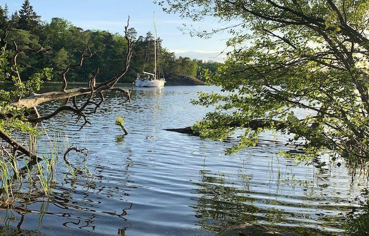 Kärsöleden, Lovö naturreservat. Foto: Lena Malmström