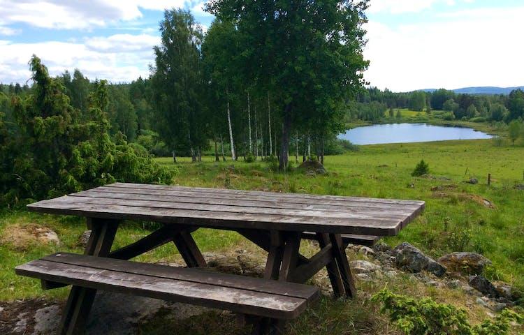 Rastplats med bord och bänkar med utsikt över sjö.