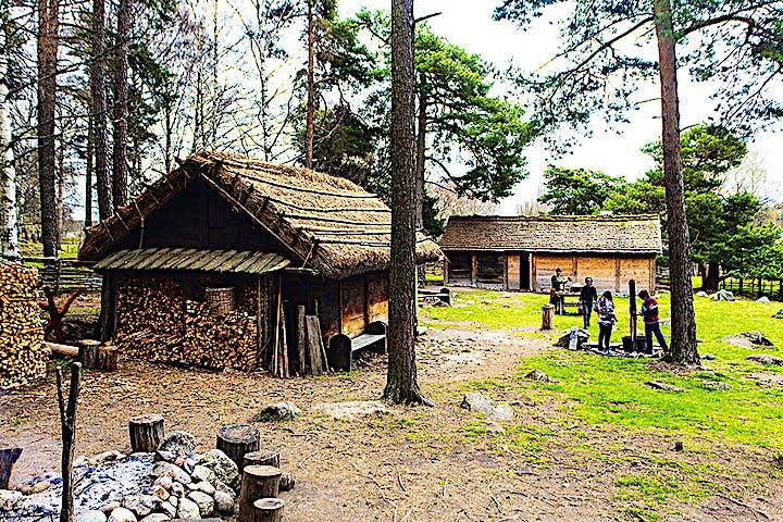 En vikingatida gård.