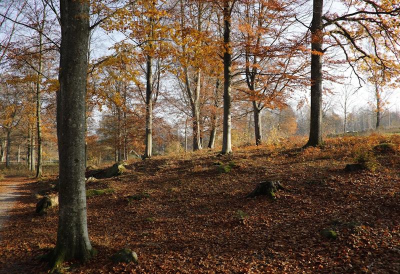 04 Halens camping - Tulseboda Brunnspark | Blekingeleden