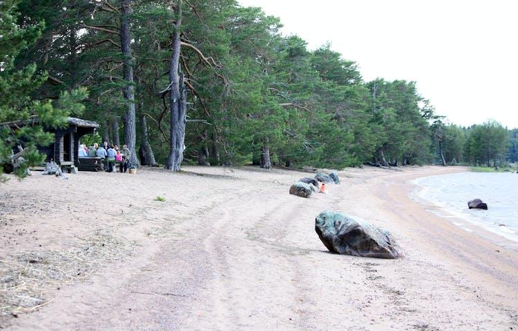 En långsträckt sandstrand kantad av tallskog. En grupp människor sitter vid ett vindskydd i skogsbrynet.