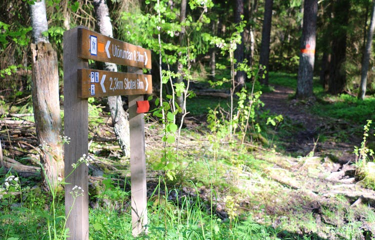 Två träskyltar visar vart leden går.
