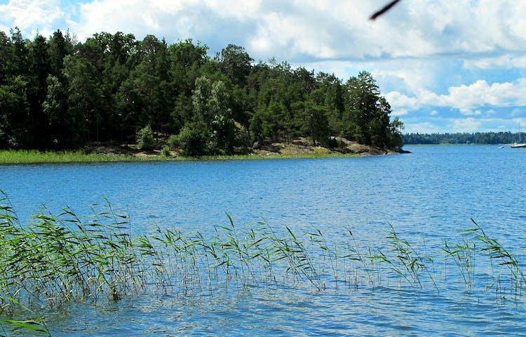 Ådö-Lagnö omges av Mälarens vatten. Foto: Lena Malmström