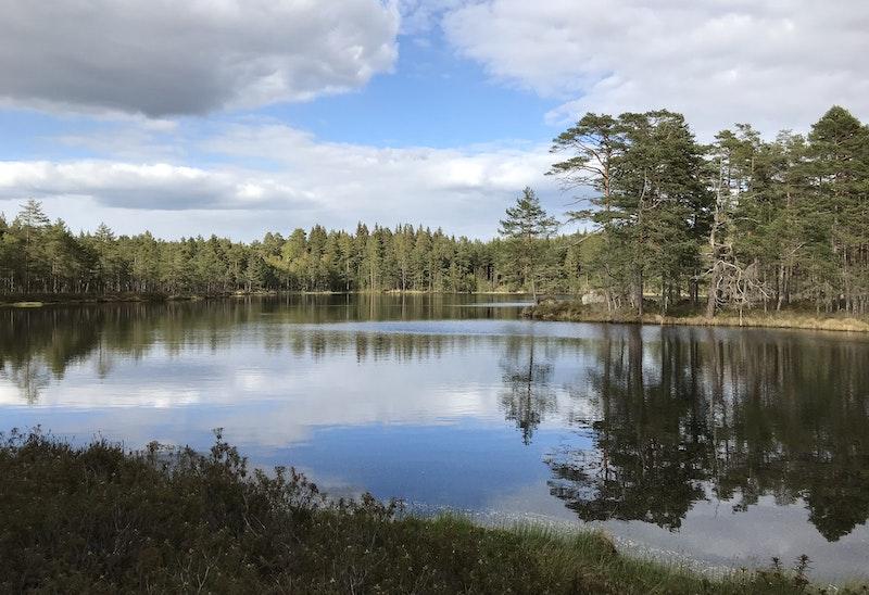 Kyrkstig Åboholm - Tived