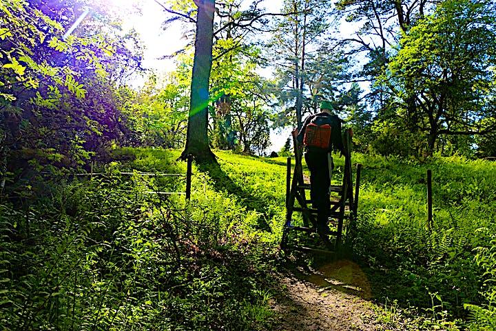 En person med ryggsäck klättrar över en stätta, som är en enklare trapp som går över ett stängsel.