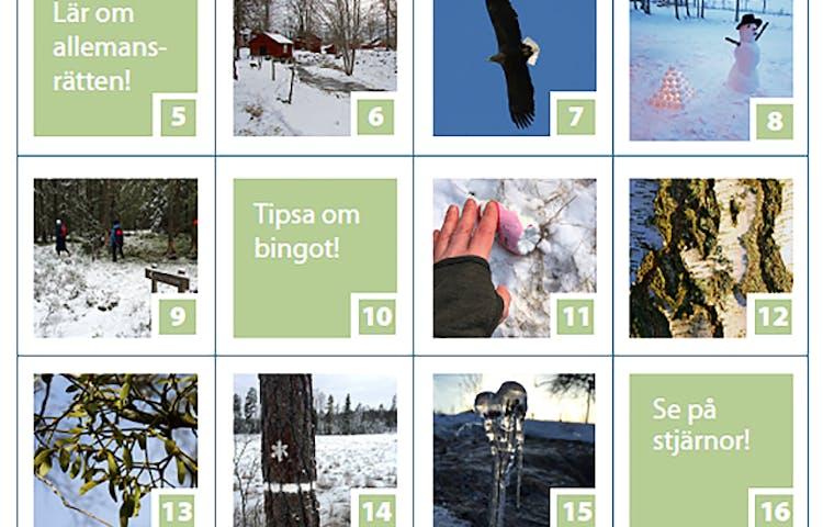 Bingobricka där några rutor är gröna medan andra har bilder på olika vintermiljöer, till exempel en snögubbe och en infrusen växt.