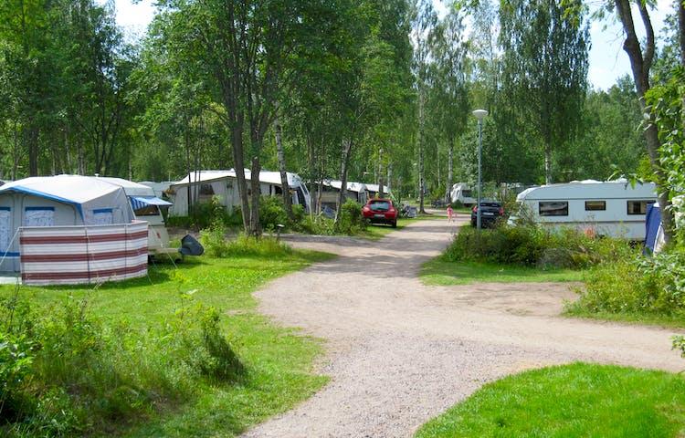 Flera husbilar är parkerade på båda sidor av en grusad väg.