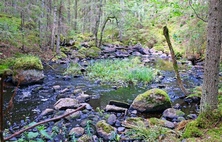 Venabäcken rinner fram genom stenpartier.