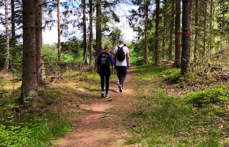 Personer vandrar på en stig i skogen, grönskande skog och en blå himmel