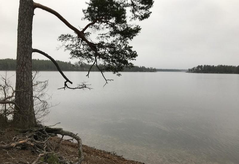 Östra Laxsjön