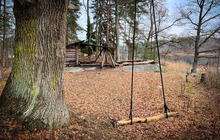 En gunga hänger från ett träd och i bakgrunden syns ett vindskydd och en grillplats.
