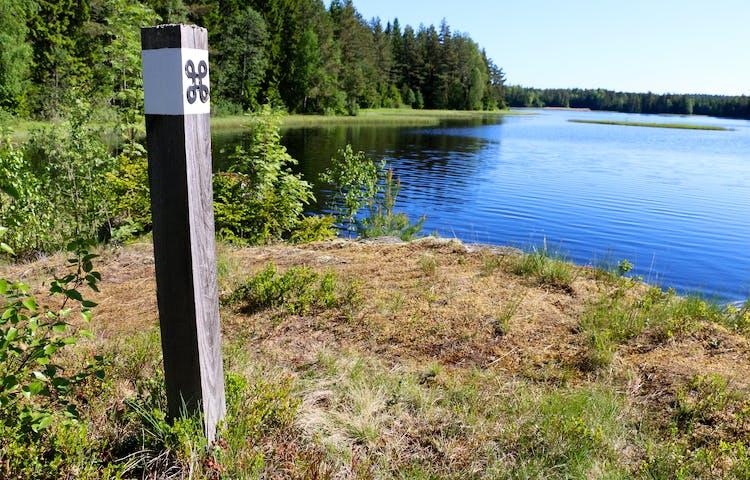 En stolpe med vit ledmarkering med en svart kringlar, som står i skog strax intill en sjö.