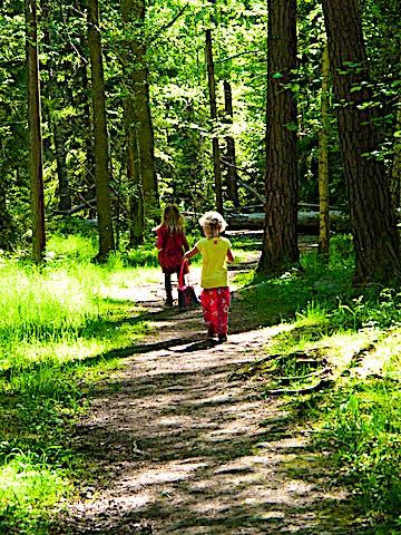 Kärsön, Lovö naturreservat. Foto: Länsstyrelsen Stockholm.