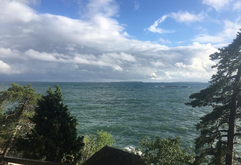 Utsikt från vindskyddet - foto: Kersti Beck Larsson
