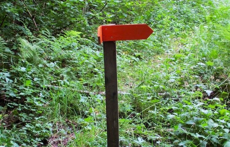 Orangemarkerade pilar visar vägen.